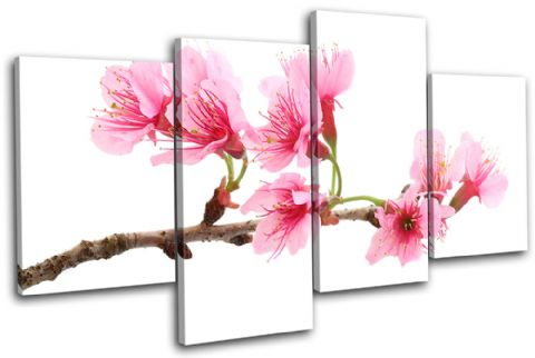 Cherry Blossoms Floral - 13-1138(00B)-MP04-LO